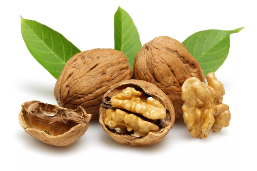 Польза и вред орехов для организма грецкий орех