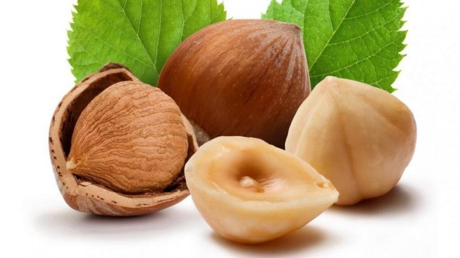 Польза и вред орехов фундук