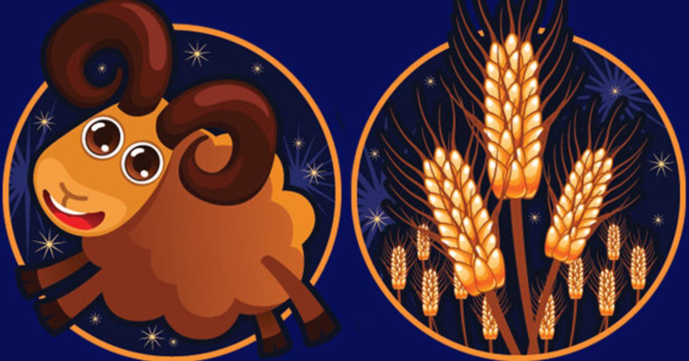 Совместимость знаков зодиака в любви Овен и Дева