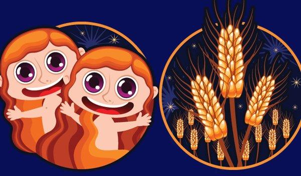 Совместимость знаков зодиака в любви Близнецы и Дева