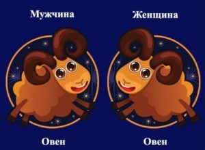 Совместимость знаков зодиака в любви Овен и Овен