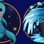 Совместимость знаков зодиака в любви Водолей и Рыбы