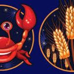 Совместимость знаков зодиака в любви Рак и Дева