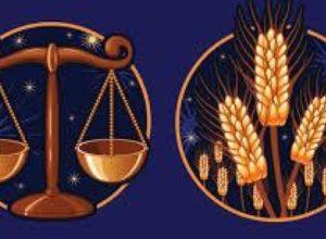 Совместимость знаков зодиака в любви Дева и Весы