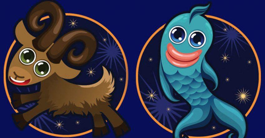 Совместимость знаков зодиака в любви Козерог и Рыбы