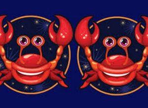 Совместимость знаков зодиака в любви Рак и Рак