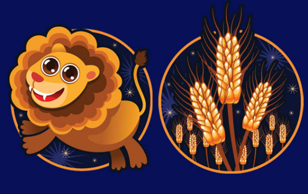 Совместимость знаков зодиака в любви Лев и Дева