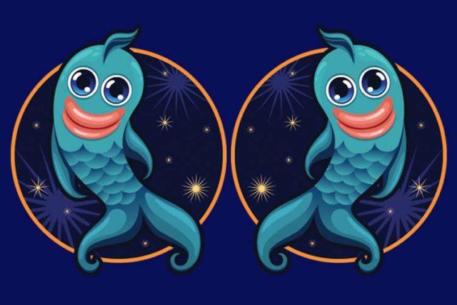 Совместимость знаков зодиака в любви Рыбы и Рыбы