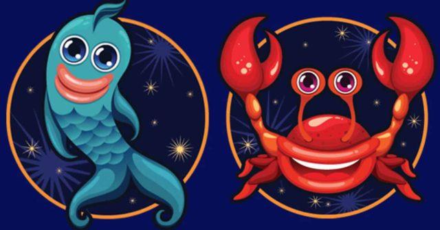 Совместимость знаков зодиака в любви Рак и Водолей